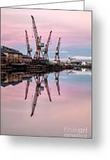 Glasgow Cranes With Belt Of Venus Greeting Card