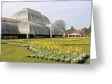 Glass House At Kew Gardens London Greeting Card
