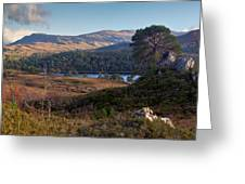 Glen Affric Panorama II Greeting Card