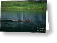 Gliding Across The Water Greeting Card