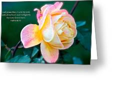 Glorify Greeting Card