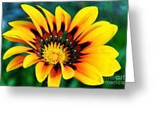 Glorious Day Yellow Flower By Diana Sainz Greeting Card