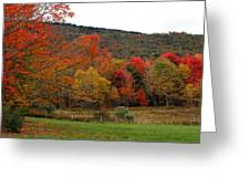 Glorious Fall Leaves Greeting Card