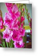 Glorious Gladiolus Greeting Card