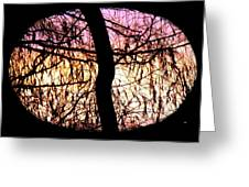 Glorious Silhouettes 3 Greeting Card