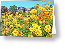 Glorious Yellow And The Franklin Greeting Card