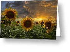 Glory Greeting Card