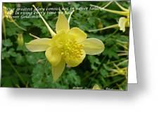 Glory Of Columbine Greeting Card
