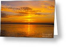 Glory Of Nature Greeting Card