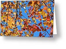 Glowing Autumn Greeting Card