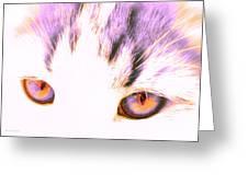 Glowing Cat Eyes Greeting Card