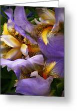 Glowing Iris' Greeting Card