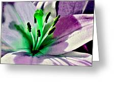 Glowing Lily Heart  Greeting Card