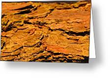 Glowing Pine Bark Greeting Card