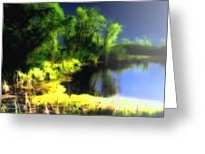 Glowing Pond On A Foggy Night Greeting Card by Ann Almquist