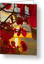 Glowing Red Greeting Card