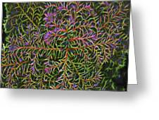 Glowing Vines Greeting Card