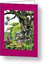 Gnarled Tree  Greeting Card