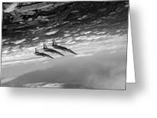 Gnats Inverted Black And White Version Greeting Card