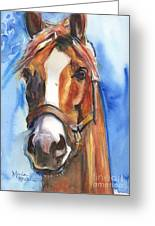 Horse Painting Of California Chrome Go Chrome Greeting Card