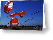 Go Fly A Kite 1 Greeting Card