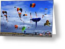 Go Fly A Kite 4 Greeting Card