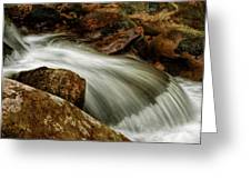 Go With The Flow Greeting Card