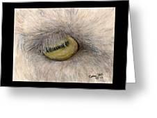 Goat Eye Farm Ranch Animal Art Cathy Peek Greeting Card