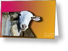 Goat Looking 3d Greeting Card