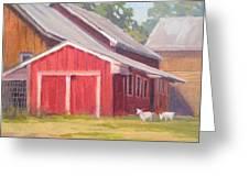 Goats At Play Greeting Card
