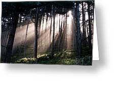 God Light Greeting Card