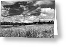 God's Country In Monochrome Greeting Card