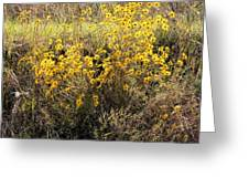 God's Golden Bouquet In Autumn Greeting Card
