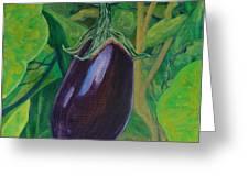 God's Kitchen Series No 6 Brinjal Greeting Card