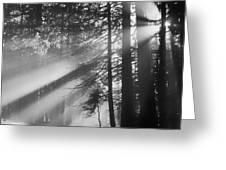 God's Light Greeting Card