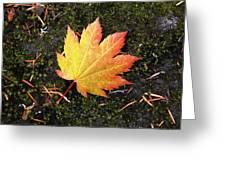 God's Perfect Leaf Greeting Card