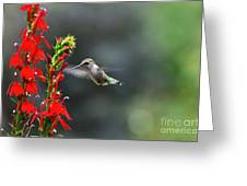 Going In For Seconds Greeting Card