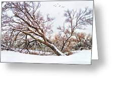 Going Softly Into Winter Greeting Card