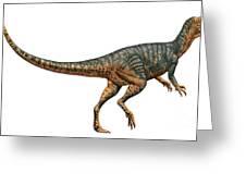 Gojirasaurus Dinosaur Greeting Card