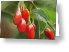 Gojo Berries Greeting Card