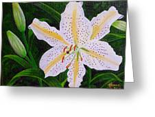 Gold Band Lily Greeting Card