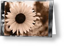 Gold Tone Sunflower Greeting Card