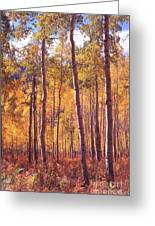 Golden Aspens Of Owl Creek Pass In Southern Colorado Greeting Card