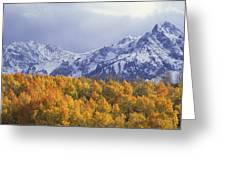Golden Aspens With Mt. Sneffels Greeting Card