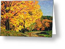 Golden Autumn Colors Greeting Card