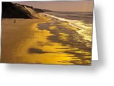Golden Beach Sunrise Greeting Card