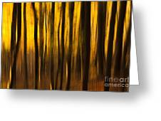 Golden Blur Greeting Card by Anne Gilbert