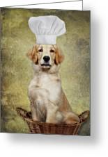 Golden Chef Greeting Card