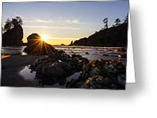Golden Coastal Sunset Light Greeting Card