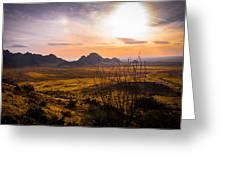 Golden Desert Greeting Card